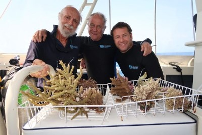 Reef Stable - Saltwater Fish Tank Blog - Great Barrier Reef Legacy - The Living Coral Biobank