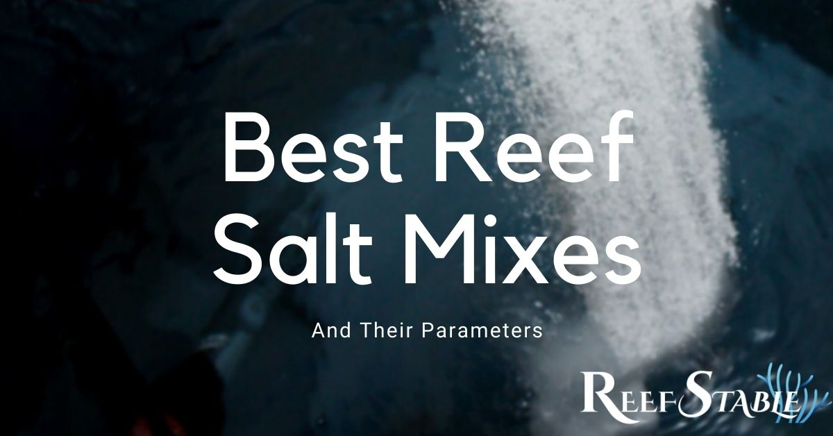 Reef Stable - Saltwater Fish Tank Blog - Reef Aquarium Guide to Salt Mix - Aquarium Salt Parameters